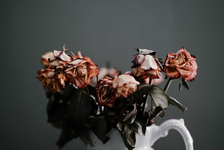 A vase of wilted roses